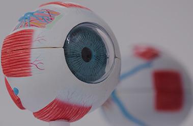 Augenklinik Rendsburg Augenlasern Auge